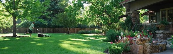 Lawn Care at Clean Air Lawn Care
