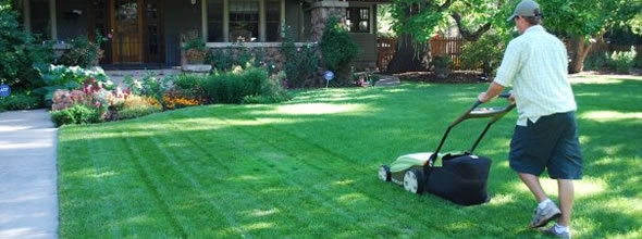 Lawn Care Services in Madison Wisconsin by Clean Air Lawn Care Madison - Mowing